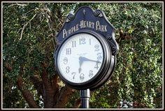 Purple Heart Park, Dunedin, Florida