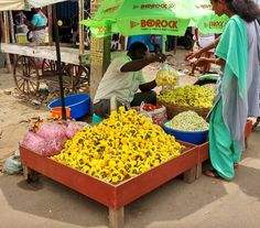 Flower vendor @#chennai#tamilnadu#india #asia making smiles on faces of graces #instanaturelover#outdoors#countryside#photography சனனமலரவறபனயளர The smallest flower is a thought a life answering to some feature of the Great Whole of whom they have a persistent intuition. #simplicity#streetlife #igers#follow#photooftheday#storiesofindia#backpackers#globetrotters#traveldiaries #passionpassport#travelblog#travelphotography#attp#ig_india#indiapictures…