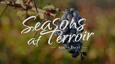 Season's at Terroir on DSTV channel 181 every Tuesday, repeats on Thursday same time. Over The Years, Wines, Thursday, Channel, Barn, Gourmet, Converted Barn, Barns, Sheds