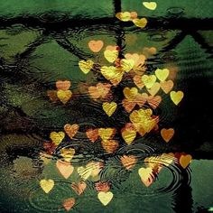 bokeh, hearts, love, photography, photoshop - image on . Heart Bokeh, Beau Message, Bokeh Effect, Photoshop Images, Out Of Focus, Messages, Favim, Rainy Days, Shades Of Green