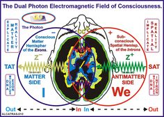 So every expression of the organism is an act of transmitting that received...each expression of word carries a vibratory nature peculiar to the process of that organisms function. We receive in frequency and also transmit in frequency.