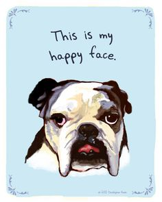 The Resting Bull Face | 21 Things Your Pets Wish They Could Tell You