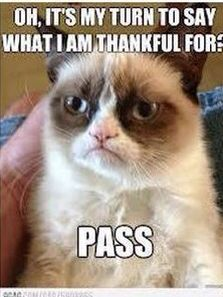 What is Grumpy cat Thankful for?