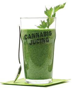 Cannabis Juicing: Oh Baby I Like It Rawwww - DOPE - Defending Our Patients Everywhere - Medical Marijuana Magazine