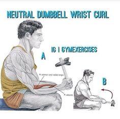 Neutral dumbbell wrist curl Curls, Neutral, Memes, Meme
