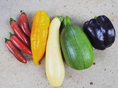 """I picked a rainbow.  L>R 'Jalafuego', 'Golden Marconi', 'Cube of Butter, 'Tatuma', 'Purple Beauty'. #organic #diversity #heirlooms #hybrids #botanicalinterests #tastetherainbow #organicgarden"" - cultivating_the_radicle (Instagram)"
