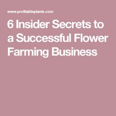 6 Insider Secrets to a Successful Flower Farming Business