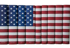 One Kings Lane - Judge a Book by Its Cover - S/9 American Flag Books