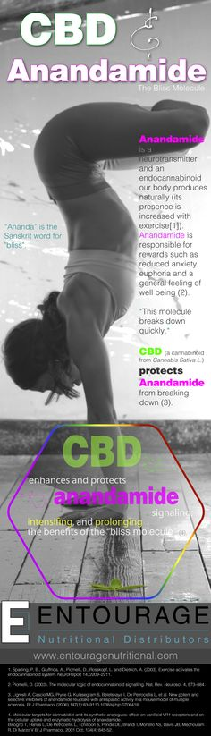 Our clients are providing health benefits across the globe to their customers. CBD protects anandamide from breaking down - The Results? - Reduced Anxiety, and increased euphoria and well being - Purchase Wholesale CBD at https://www.entouragenutritional.