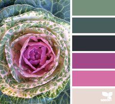 for all who love color. Colour Pallette, Color Palate, Colour Schemes, Color Combos, World Of Color, Color Of Life, Color Magic, Color Harmony, Creative Colour