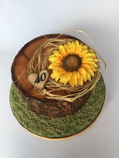 Stump & sunflower  by Layla A