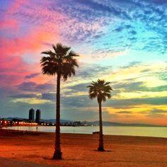 ABCHumboldt-Barcelona Spanish Courses Damos las gracias a todos/as aquellas personas que hacen posible estas bellas imágenes de Barcelona