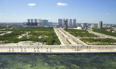 ¿Ecocidio en Cancún? 10 datos que debes conocer de la devastación del manglar Tajamar - ReporteLobby
