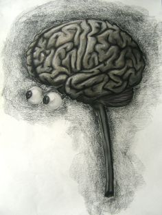 Your weird, weird, weird brain.    http://brainspongeblog.com/2015/07/23/quirks1/