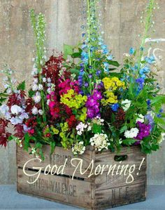 Goede morgen.