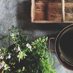 Kinfolk Flower Potluck workshop - Portugal style.