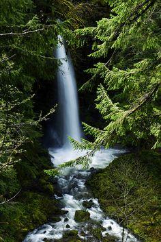 Skamania County, Washington, US (by Darrell Wyatt)