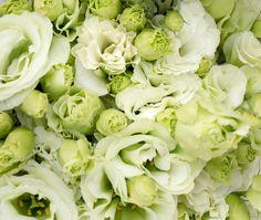 038 Flowers Green