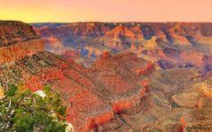 Download Wallpaper the sky, sunset, mountains, tree, canyon, AZ, USA, USA, Grand Canyon National Park, section пейзажи Resolution 1680x1050