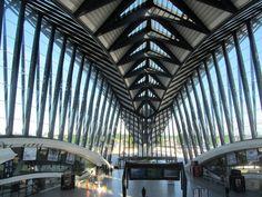 """Egalement l'occasion de vous faire découvrir les """"entrailles de l'aéroport Saint Exupéry de Lyon. Cela ressemble à l'ossature d'une baleine"""