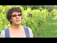 ▶ Bolney Wine Estate Promotional Video - YouTube English Wine, Great British, Youtube, English People, Products, Youtubers, Youtube Movies