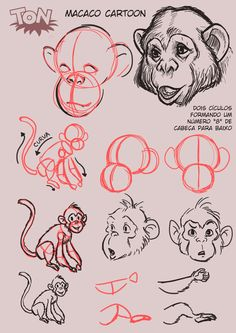 Tutorial Cartoon monkey by TonAlleks.deviantart.com on @DeviantArt