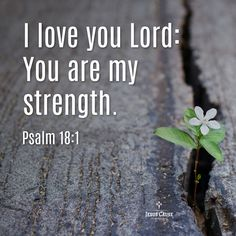 Psalms Quotes, Bible Verses Quotes, Faith Quotes, I Love You Lord, I Love Jesus, Religious Quotes, Spiritual Quotes, Christian Love, Bible Encouragement