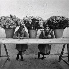 Floristas de la Rambla Barcelona 1950s   Photo: Francesc Catala Roca
