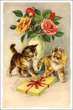 Adorable kittens with vase of roses & gift
