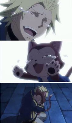 Fairy Tail Sting and Lector