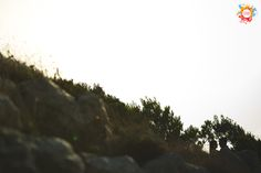 www.colormyevent.com  #colormyevent #casar #casorio #casamento #casamentos #casamentodoano #wedding #noivo #noiva #noivos #diafeliz #happyday #fotografodecasamento #sessaodenoivado #sessaofotografica #engagementphotoshoot #engagementphotos #aliancas #fotografia #photography #fotografiadecasamentos  #weddingphotography #weddingblogger #vestidodenoiva #weddingdress #decoracaodecasamento #blogdenoiva #blogdecasamento