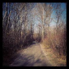 Dieter's Radtouren: 3.12.13 - Brodersdorf Mountain Biking, Country Roads, Bike, Bike Rides, Bicycle, Bicycles