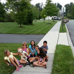 Coventry kids having fun with the new neighborhood puppy