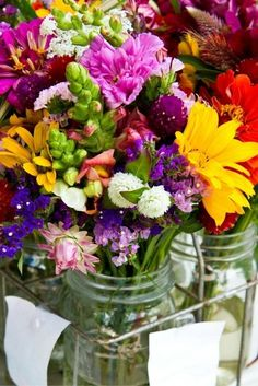 Cut Flower Garden I always buy from Eden Brothers online, not only do they have a wide variety they sell in bulk. I take a handful of each variety, mix them all in a bag, and broadcast them over the soil. No neat rows for me, it's just a lovely mix of color when it all starts to bloom. Cosmos Sunflowers Cornflower Bishops Flower Zinnias Zinnia Cactus Mix Daisy Gloriosa Mix