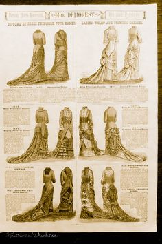 American Duchess: Mme Demorest's Illustrated Portfolio of the Fashions for 1880