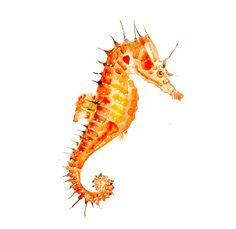 """Orange Seahorse portrait, Original Watercolor Seahorse decorations, Small watercolor Sea horse illustration 5""""x7"""". $40.00, via Etsy."""