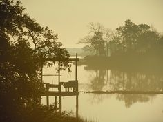 Sepia Dawn by Cathy Marshall. Sometimes a sunrise has very little sun. This foggy morning suggested the tone of the rest of the day, revealing itself slowly with the dawn. I love the sepia tone of the light and the reflections in the water and the layers of light in the coastal Carolina silhouette of nature.