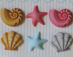 Seashell Buttons Fun In The Sun Collection Buttons Galore - http://www.funhunter.com/seashell-buttons-fun-in-the-sun-collection-buttons-galore.html