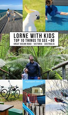 The best things to do in Lorne with kids - Includes Top 10 things to see and do in Lorne on the Great Ocean Road, Victoria. Places In Melbourne, Melbourne Travel, Victoria Kids, Victoria Australia, Travel With Kids, Family Travel, Stuff To Do, Things To Do, Famous Places
