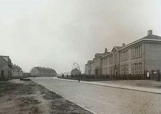 Oude Rietmavo