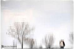 Kikinda Staro Jezero Refleksija na vodi Explore, Landscape, Nature, Photos, Outdoor, Outdoors, Scenery, Pictures, Landscape Paintings
