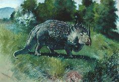 Агатаум (лат. Agathaumas, буквально «огромное изумление») — род динозавров семейства цератопсид, живших 70—66 млн лет назад (маастрихтский век верхнего мела) на территории Северной Америки. Достигал в длины 9 метров, высоты 3 метра и веса 5 тонн. Окаменелости агатаума были найдены в округе Суитуотер (Sweetwater County) штата Вайоминг. Впервые описан палеонтологом Коупом в 1872 году. Представлен одним видом — Agathaumas sylvestris[1][2