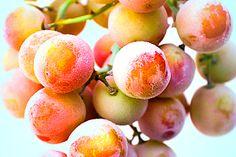 Weißwein schmeckt nun mal besser wenn er kalt ist. Doch wie auf die Schnelle kühlen? Legen Sie ein paar gewaschene (bunte) Weintrauben ins Gefrierfach. Die gefrorenen Trauben packen Sie später einfach in das Glas Weißwein. Das sieht nicht nur dekorativ aus, sondern erfüllt auch seinen Zweck. Und wer will, kann die Trauben nachher mit einem Zahnstocher rauspicken und naschen.