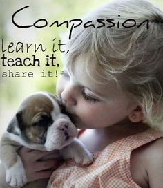 compassion and empathy quotes - Google Search