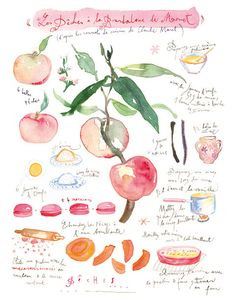 French kitchen artwork, Peach pie recipe print, Food art, Fruit illustration poster, pink wall decor