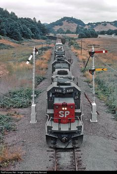 RailPictures.Net Photo: SP 8233 Southern Pacific Railroad EMD SD40T-2 at Between Riddle and Myrtle Creek, Oregon by Marty Bernard