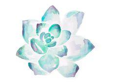 Succulent Illustration watercolor art print by JasmineWisz on Etsy