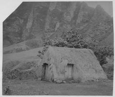 Hawaiians: Grass Houses