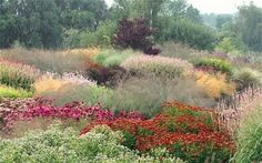 Dutch master: the garden design genius of Piet Oudolf - Telegraph