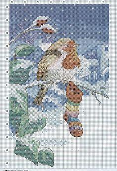 Gallery.ru / Фото #96 - album Birds 54 - joobee